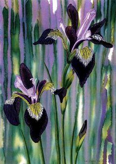 "Art Print: ""Irises at dawn"" - A4 flower print, iris painting, wall art, lilac purple art, floral art, from a painting by Liz Clarke"