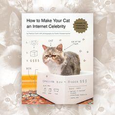 How to Make Your Cat an Internet Celebrity: A Guide to Financial Freedom Os leitores vão desvendar os segredos para tornar o seu gato uma super estrela da Internet! geral@casaruim.com   http://casaruim.com/