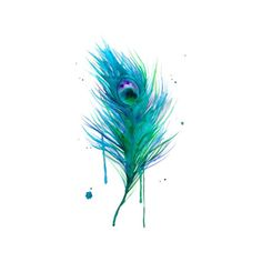 watercolor tattoos I have been seeing. Lot of water color tattoos lately and love how they look. I love not Having the harsh black out line.,let's get inked,snapbacks & TATTOOS! Watercolor Peacock Tattoo, Peacock Feather Tattoo, Feather Tattoo Design, Peacock Painting, Feather Tattoos, Peacock Feathers, Watercolor Tattoos, Blue Feathers, Pink Peacock