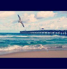Birds of a feather. #beach #photography #art