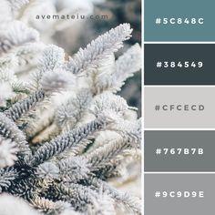 Color Palettes – Ave