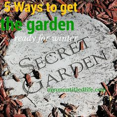 I worked yesterday in my yard for a few hours. I have to get it ready for winter. What do you work on before winter gets here in your garden or yard? Here's 5 things I do to get my garden ready for winter. Raised Garden Bed Plans, Monty Don, Do You Work, Organic Gardening Tips, Horticulture, You Got This, How To Get, Winter, 5 Ways
