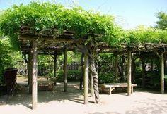 A shady wooden pergola at Koko-En (Nishi-Oyashiki-Ato) Gardens in Himeji, Kansai, Japan
