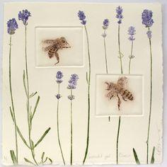 Urban Bees | Lynn Bailey