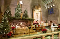 Last Trending Get all images christmas manger decorations Viral church christmas decorations Christmas Manger, Christmas Stage, Christmas Nativity Scene, All Things Christmas, Christmas Ceiling Decorations, Altar Decorations, Beautiful Christmas Trees, Victorian Christmas, Christmas Pictures
