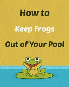 It's important to know how to keep frogs out of your pool not because of cleanliness, but to live harmoniously with the creatures in your yard. Swimming Pool Designs, Swimming Pools, Decks Around Pools, Swimming Pool Maintenance, Pool Water Features, Pool Care, Pool Hacks, Pool Cleaning, Ideas