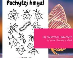 5 jarních aktivit s hmyzem - Kuncicka.cz
