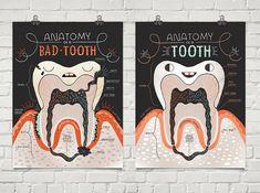 Anatomía de un diente malo y bueno: lámina dos por Rachelignotofsky