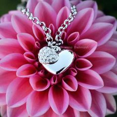 Wow, was ein Foto: auch Verena (verena_theilmann) liebt unsere strahlende More Amore Necklace!