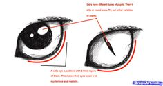 Cats Eye Drawing Reference Ideas For 2019 Cat Eye Tutorial, Cat Drawing Tutorial, Eye Drawing Tutorials, Drawing Techniques, Drawing Tips, Drawing Reference, Art Tutorials, Drawing Stuff, Painting Tutorials