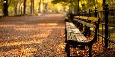 【画像】ニューヨークの紅葉が、ただひたすらに美しい  のhttp:// huff.to/1rO8Fot
