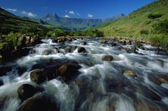 The Drakensberg Mountains of South Africa or uKhahlamba (the Barrier of Spears) Midland Meander, Safari, Durban South Africa, Garden Route, Kwazulu Natal, Victoria Falls, Next Holiday, Places To See, Wildlife
