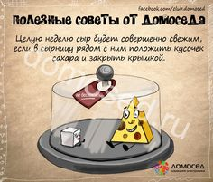 Хранение сыра