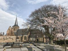 Hilligersberg Rotterdam
