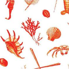Clarence House Fabric 34224-1 Od La Mer Sand