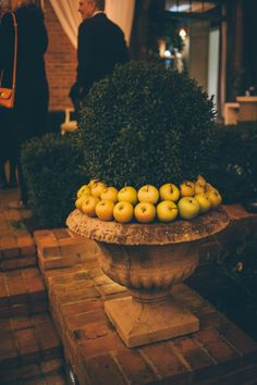 Apples with boxwood. These tips walk you through how to throw a perfectly elegant holiday party!