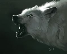 Wolf Speed Painting by giovannag on deviantART Fantasy Creatures, Mythical Creatures, Wolf Growling, Art Wolfe, Tier Wolf, Of Wolf And Man, Fantasy Wolf, Anime Fantasy, Wolf Hybrid