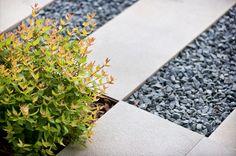 Abelia X Grandiflora, gravels and stone.  www.frassinago18.com