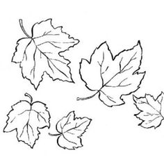 Red Maple Leaf Coloring Page