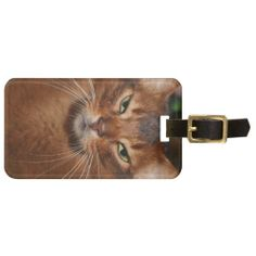 SOMALI CAT LUGGAGE TAG