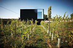 Loimer Winery 2 • TheCoolist - The Modern Design Lifestyle Magazine