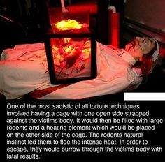 41 Haunting Pics That Will Chill You To The Bone - Creepy Gallery Fun Facts Scary, Funny Facts, Weird Facts, Fascinating Facts, Interesting Facts, Funny Memes, Short Creepy Stories, Spooky Stories, Horror Stories
