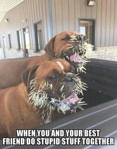 They look so happy