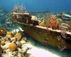 shipwrecks | NCL - Bermuda Triangle Shipwreck Snorkel customer reviews - product ...