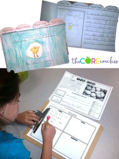 Students read, research, then write about the life cycle of a chicken