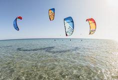 Best New Toys 2017 kites Best TS, Best Roca, Best GP in Italy