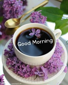 Good Morning Love Messages, Good Morning Images, Good Morning Quotes, Good Morning Saturday, Good Morning Good Night, Good Day, Good Morning Animation, Keep Calm Quotes, Purple Rain