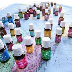 15 Common Young Living Oils and How they can Help You In Your Day To Day Life  Basil alleviates depression and helps to restore mental clarity. It relieves headaches, sinus congestion, indigestion, and sore muscles. The sweet, spicy, balsamic fragrance blends well with bergamot, clary sage, rosemary, and peppermint.  Bergamot has an uplifting quality and eases anxiety and depression. It has antiseptic properties and is helpful for respirato