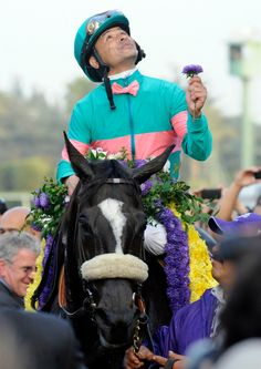 Image detail for -Zenyatta, The Greatest Race Horse In History -or- The Greatest Race ...