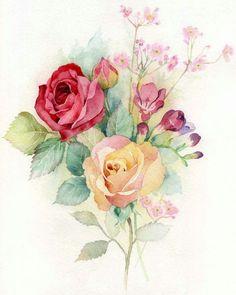 розы акварелью: 19 тыс изображений найдено в Яндекс.Картинках