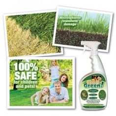 Get It Green Lawn And Bush Brown Spot Repair - BUY 1 GET 1 FREE! http://www.homgar.com/get-it-green-plant-restorer