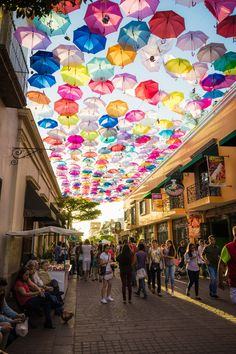 Walking under the umbrellas - Umbrellas in Independencia street in…