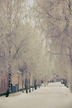 Winter in Uusikaupunki