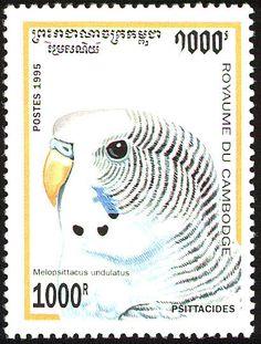 Camboya 1995 -  El Periquito Común, Periquito Australiano, Cotorra Australiana o Cata Australiana