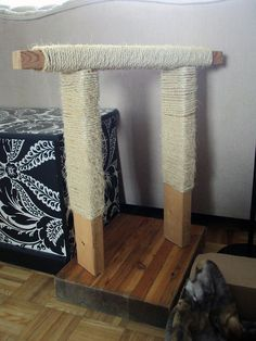 DIY scratching post and the black and white bench on the left is a hidden litter box!! Genius