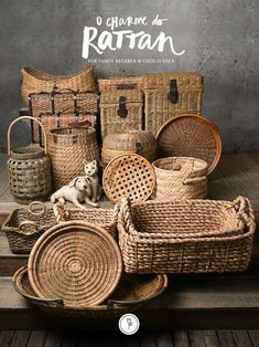 O charme do rattan em produtos da Cecila Dale para encantar a sua casa com estilo natural e uma pitada étnica com elegância e muito design!