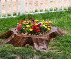 15 Amazing Tree Stump to Planter Conversions - Page 3 of 3 - Garden Lovers Club