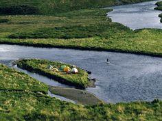 "Fabulous fishing creates tent towns on the Ayakulik. Six salmon species—chinook, sockeye, pink, coho, steelhead, and chum—spawn in it.    —From ""Kodiak: Alaska's Island Refuge,"" November 1993, National Geographic magazine"