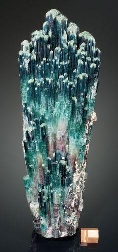 """TOURMALINE Sapo Mine, Ferruginha, Conselheiro Pena, Doce Valley, Minas Gerais, Brazil  ---  crystal groups referred to as """"shaving brushes"""" for their obvious resemblance to that antiquated grooming aid."""
