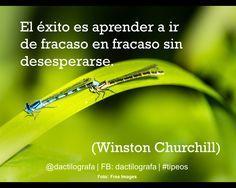 """""""El éxito es aprender a ir de fracaso en fracaso sin desesperarse"""". (Winston Churchill) #Frases #Exito"""