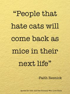 "For my cat loving friends! ""People that hate cats will come back as mice in their next life. via Quotes for Cats and the Humans Who Love Them"" Hate Cats, I Love Cats, Cat Quotes, Animal Quotes, Quotes About Animals, Cat Sayings, Animal Pics, Animal Memes, Funny Animal"