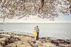 A Harkness Park Engagement Photos in CT