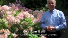 Video vignette of favourite spot at Butchart Gardens. Garden Making magazine is touring Canada's Garden Route coast-to-coast. #butchartgardens