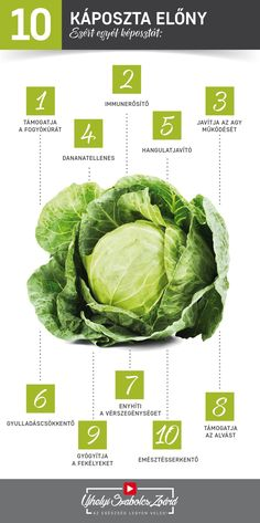 Lettuce, Cabbage, Nutrition, Vegetables, Lifestyle, Health, Tips, Food, Health Care
