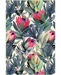 Painted Protea Pattern als Tapete von Micklyn Le Feuvre | JUNIQE