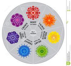 colorful mandalas | Chakras Color Chart with Mandalas in an Heptagon / Circle. Can be ...